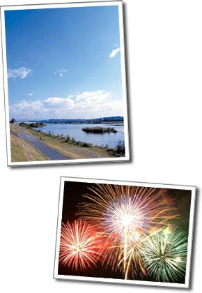 四季の多摩川と花火