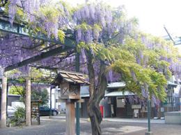 12・國領神社