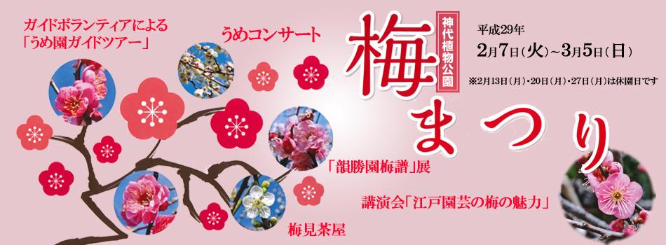 神代植物公園「梅まつり」